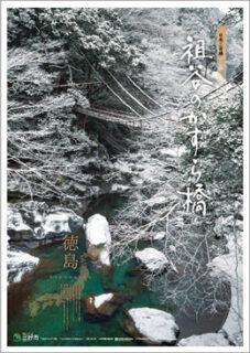 祖谷のかずら橋 冬